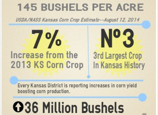 Kansas Corn Crop Estimated to Be Third Largest