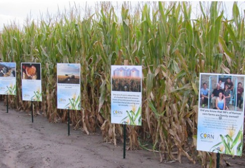 Kansas Corn Provides Educational Signs at Mazes Across the State