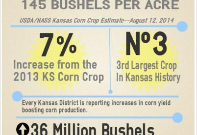 Kansas Corn Crop Estimated to Be Third Largest