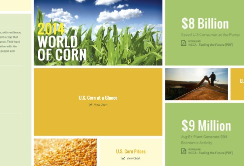 Find Corn Facts, Figures in World of Corn
