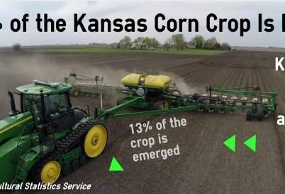 Kansas Corn Planting Makes Steady Progress
