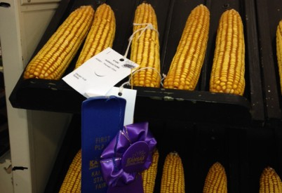 Steven Yust Wins Top Corn Prize