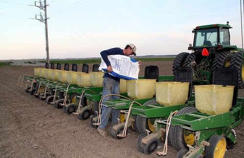 Kansas Corn Plantings Estimated Up 16% Says Prospective Planting Report