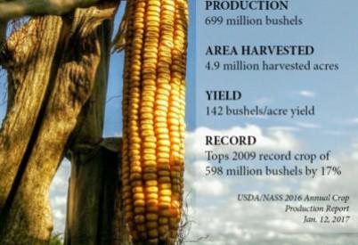 2016 USDA/NASS Crop Production Numbers ShowRecord Kansas Corn Crop