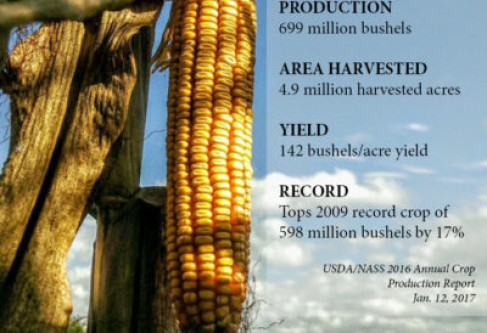 2016 USDA/NASS Crop Production Numbers Show Record Kansas Corn Crop