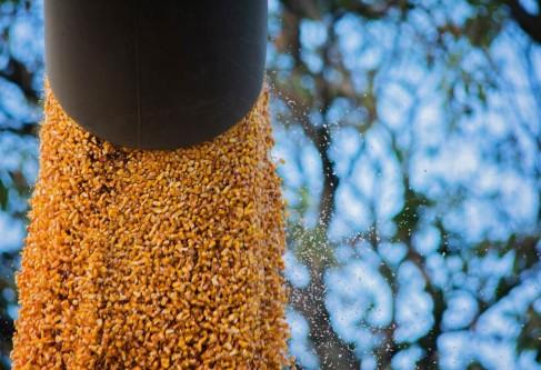 Kansas Corn Encouraged by Bipartisan Effort to Advance USMCA, Urges Immediate Passage