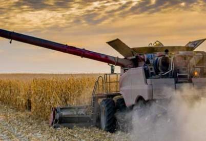 Kansas Corn Estimate Rises in October Crop Report