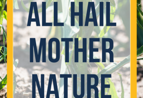 All Hail Mother Nature
