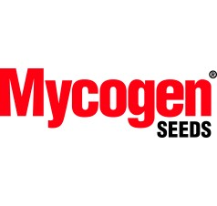 Mycogen Seeds