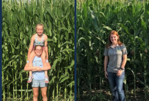 Knee High By 4th of July…or not
