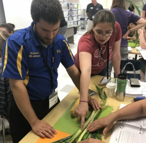 6-12 Training–Seed to STEM