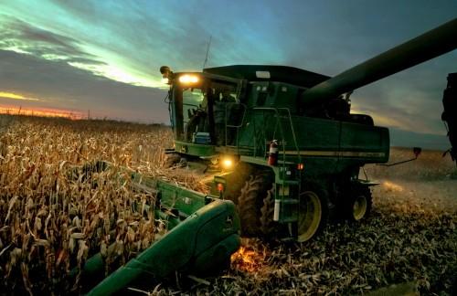 Kansas Corn Crop Shows Positive Progress