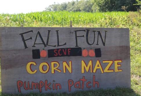 Salt Creek Valley Farms: Full of Fall Fun