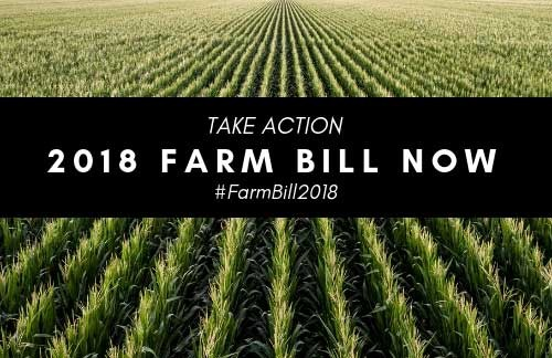 Stand Up for the Farm Bill – Stand Up for Corn