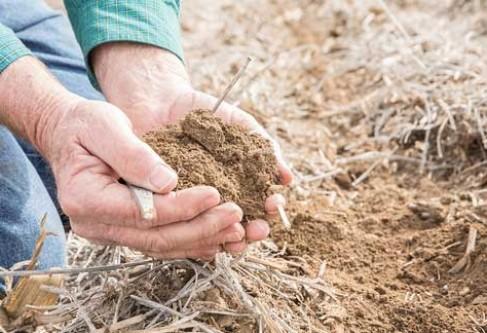 Kansas Corn Sees EPA's New WOTUS Rule as Positive Step