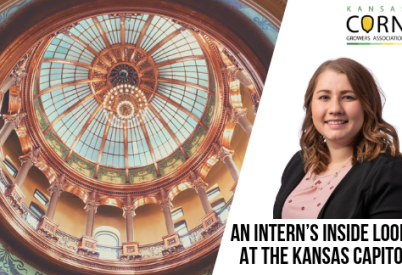 An Intern's Inside Look at the Kansas Capitol