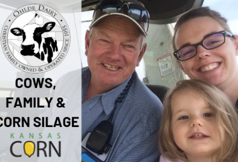 Ohlde Dairy: Cows, Family and Corn Silage