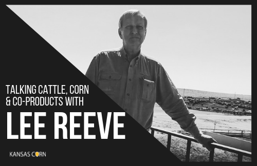 Talking Cattle, Corn and Co-Products with Lee Reeve