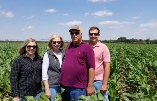 Efficient and Effective: Sub-Surface Drip Irrigation