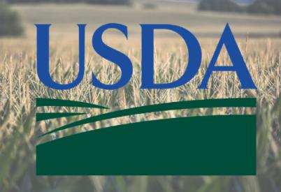 Kansas corn production estimates up, bucking national trend
