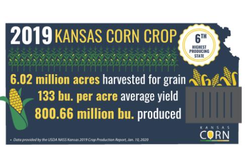 2019 Kansas Corn Crop Shatters Record