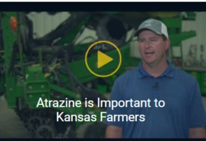 Why Atrazine Is Important to Farmers