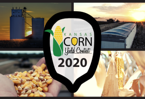 Kansas Corn Announces 2020 Kansas Corn Yield Contest