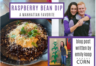 Raspberry Bean Dip a Manhattan Favorite