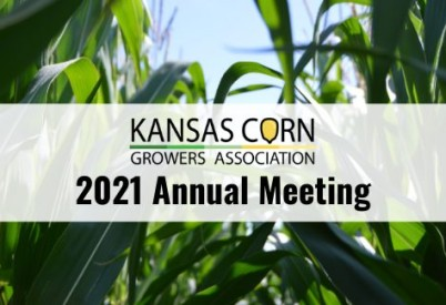 Kansas Corn Growers Association Elects New Board Member; Holds First Virtual Annual Meeting