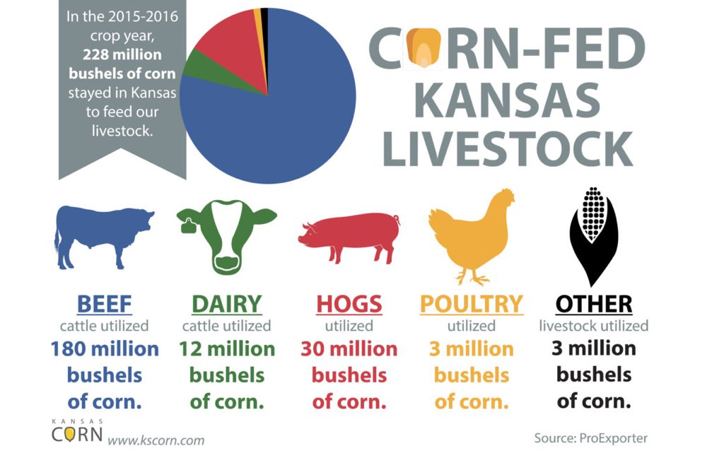 https://kscorn.com/wp-content/uploads/2017/07/KS-Corn-Building-Markets-Livestock-KCC-image.jpg