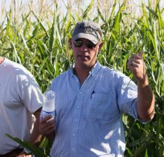 KS Corn - Long Farm