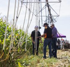 KS Corn - WaterPACK/ILS Farm