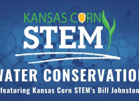 KS Corn STEM CL Video Intro  Counting Kernels (5)