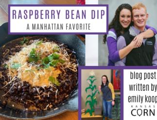 Raspberry Bean Dip A Manhattan Favorite