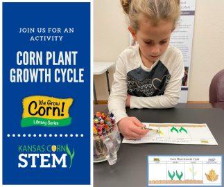 Unit 1 Plant Cycle