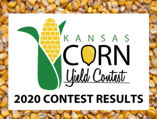 2020 CONTEST RESULTS