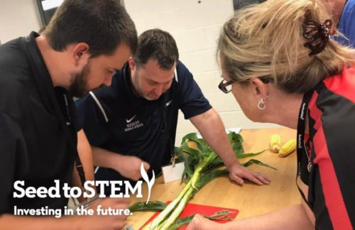 KS-Corn-Education-for-teachers-6-12-curriculum-seed-to-stem-image