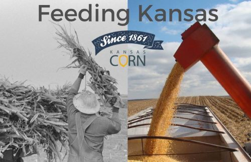 KS-Corn-Building-Markets-Ethanol-KCGA-image